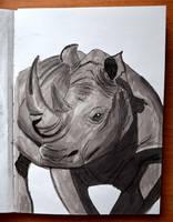Rhinoceros by Irik77