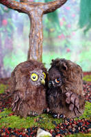 Owls 002 by Irik77