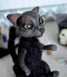 Harry Potter cat 002 by Irik77