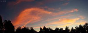A Midsummer's Night by TaGiRoCkS