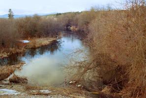 Upstream by mackilvane