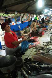 Fish Market by yogadeagar