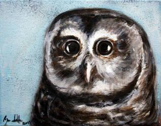 owl 1 by jahshalom