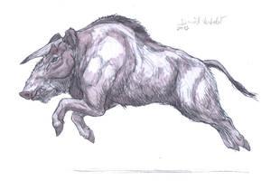 Kubanochoerus by Gredinia