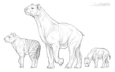 Macrohyracinae sub-family for GlazeSugarNavalBlock by Gredinia