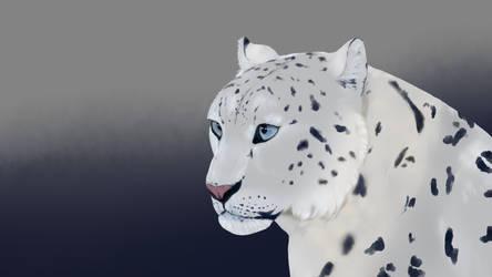 Snow Leopard by Mantisbug