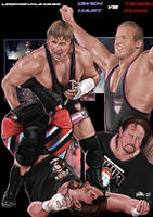 Owen Hart vs Terry Funk by Bardsville
