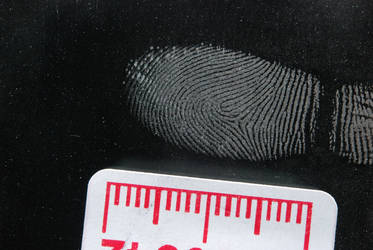 Fingerprint 2 by wolvesbreath