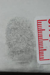 Fingerprint 3 by wolvesbreath