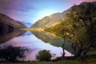 Beautiful New Zealand by petronellavanree