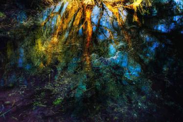 Lost souls by petronellavanree