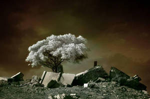 After IR by gilad