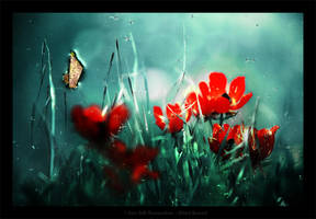 I Can Still Remember by gilad