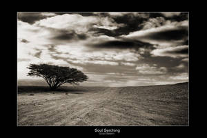 Soul Searching by gilad