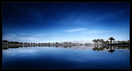 Oasis by gilad
