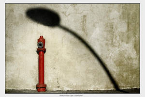 Shadow of the Light by gilad