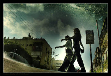 A walk on the other side by gilad