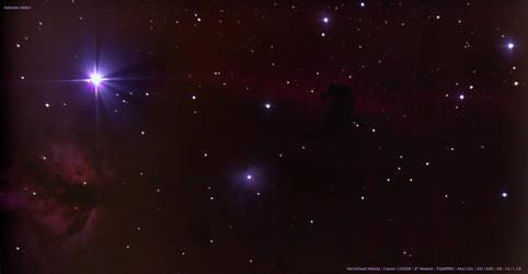 Horsehead Nebula (NGC 2023) by archonom