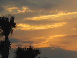 Sunsets in florida. by jar-of-urine