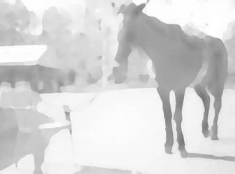 Horse by PakPolaris