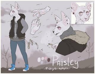 Paisley22 by SmidgeFish