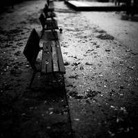 Benches in line by burzinski