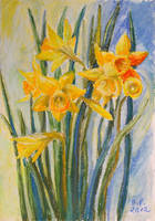 Daffodils by BarbaraPommerenke