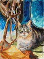 Barn Cat by BarbaraPommerenke