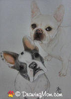 Drawing of Benny and Lily by DrawingMom