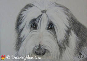 Drawing of Snoopy by DrawingMom