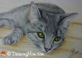 Drawing of April by DrawingMom