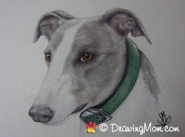 Drawing of Declan by DrawingMom