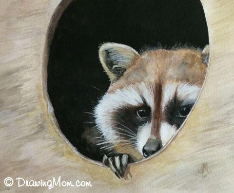 Raccoon by DrawingMom