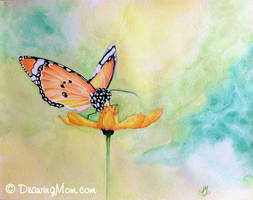 Butterfly by DrawingMom
