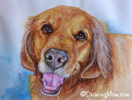 Tanner by DrawingMom