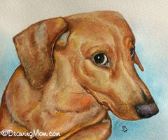 Watson by DrawingMom