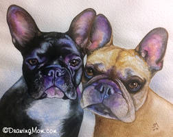 Two Frenchies by DrawingMom