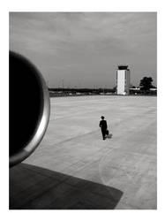 Final Flight by bravenewworld