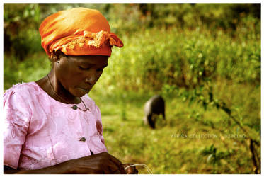 The Basket Weaver of Nkuringo by Studio5