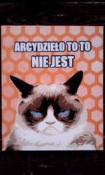 Grumpy Cat by Szykielet