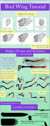 Bird Wing Tutorial by TheAntimonyElement