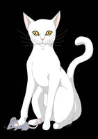 Chat Blanc by silwek