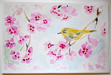 Bird and Sakura by Ashley2020