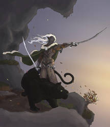 Drizzt Colours by meatboy