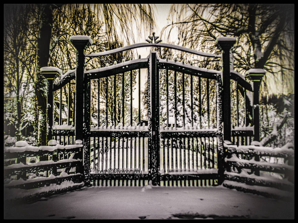 BEHIND MY HOME , OUTSIDE THE GATES !!!! by IME54-ART