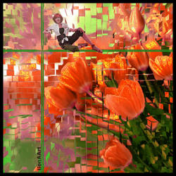 TULIPS IN ANOTHER WAY ! by IME54-ART