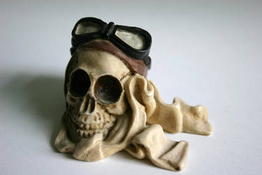 Skull Guy by PureStock