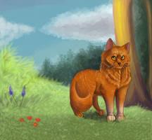 Thunderstar by Happy--Cat