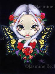 Impatiens Fairy by jasminetoad