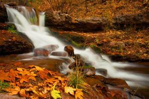 Horton Creek by TrentLarsonphoto
